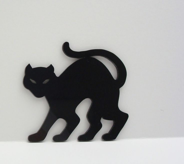 cat - Black Cat Silhouette Halloween