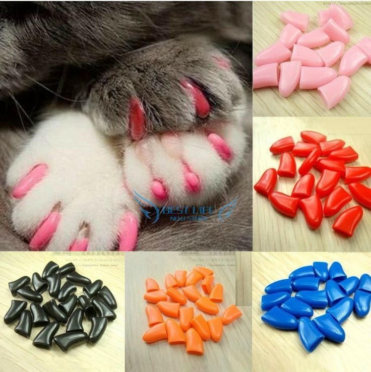 Wholesale 20pieces Pet Dog & Cat Nail Caps Claw Control Pet Cat Soft Paw Size S ,M,L,XL 9 color Available free shipping $3.19