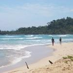 The Firefly Bocas del Toro (Panama/Isla Bastimentos) - B Reviews - TripAdvisor