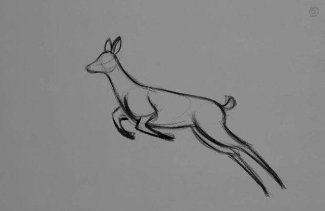 Deer_run