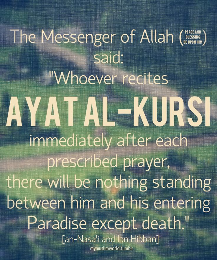 seeker: Photo Abu Ummah said: The Messenger of Allah (pbuh) said:' Whoever recites Ayat Al-Kursi immediately after each prescribed Prayer, there will be nothing standing between him and the gates of paradise except death.""