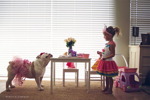 The love between a little girl and her Bulldog, Adorable photos! This will be Wrigley and our baby girl