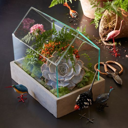 With its concrete base and simple, stylish design, this glass House Terrarium is great for arranging your succulents, ferns and small flowers.