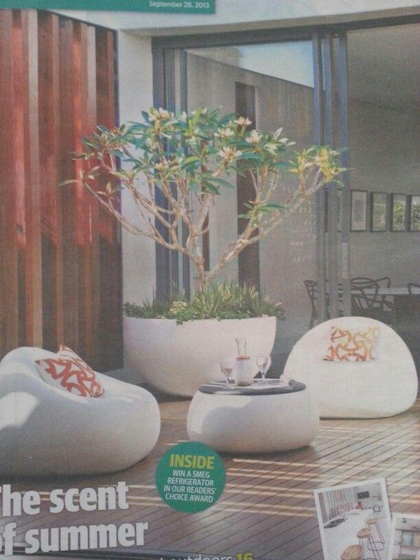 luv the pot wit the frangipani