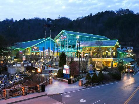 Ripley's Aquarium (Gatlinburg, TN) : Best Aquariums in the US : TravelChannel.com