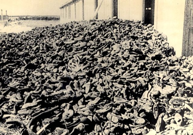 medical experiments of the holocaust research paper