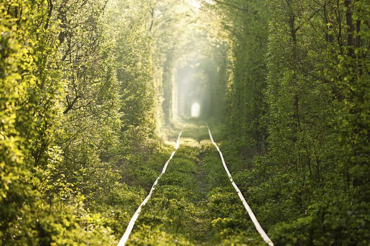 The Tunnel of Love, Ukraine: | 12 Most Dark And Mysterious Places On Earth