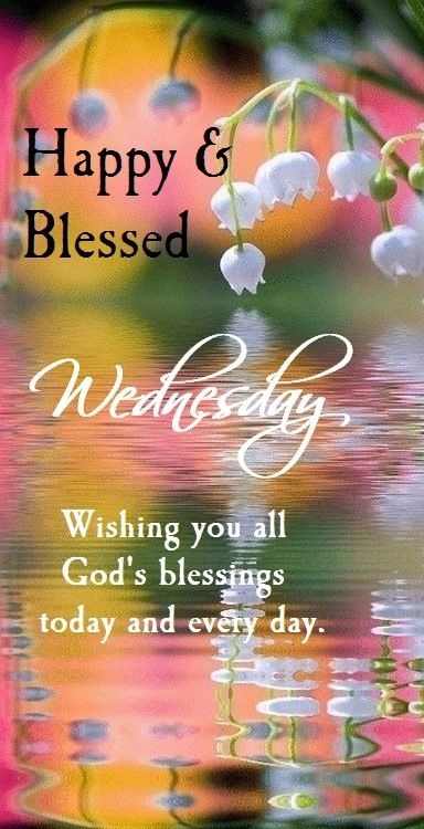 Happy  Blessed Wednesday!