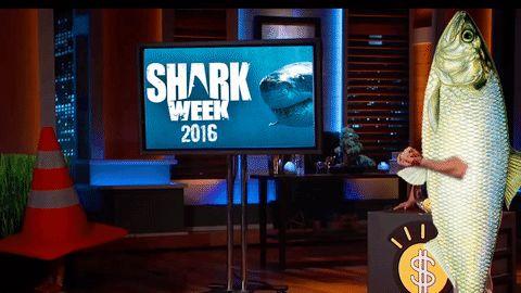 shark week shark tank shark week 2016 trending #GIF on #Giphy via #IFTTT http://gph.is/28XBJEh