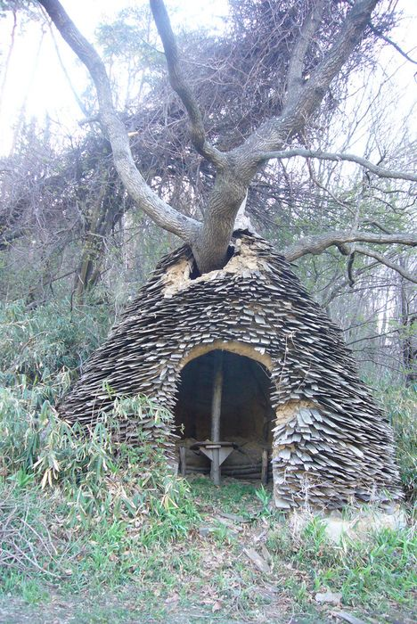 how to build a permanent shelter in the wilderness