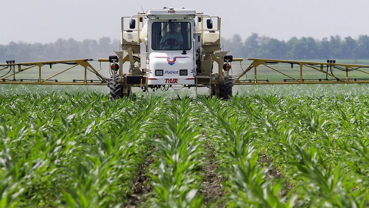 World Health Organization report says Monsanto weed killer ingredient is probably causing cancer