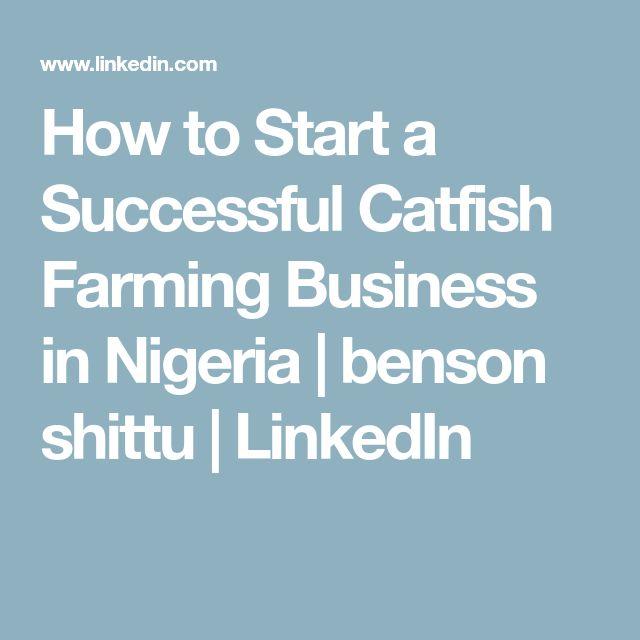 How to Start a Successful Catfish Farming Business in Nigeria | benson shittu | LinkedIn