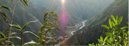 """machu picchu sanctuary lodge dormir com vista para a """"cidade perdida dos incas"""""""