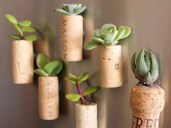 From Corks to Planters