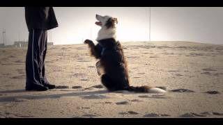 Training at the beach Claudia Estanislau - YouTube