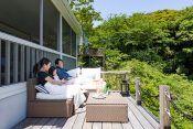 大きなヤシの木がシンボルツリー。金網フェンスの向こうに建つシダーウッドの家は、ここが東京郊外だということを忘れさせる。