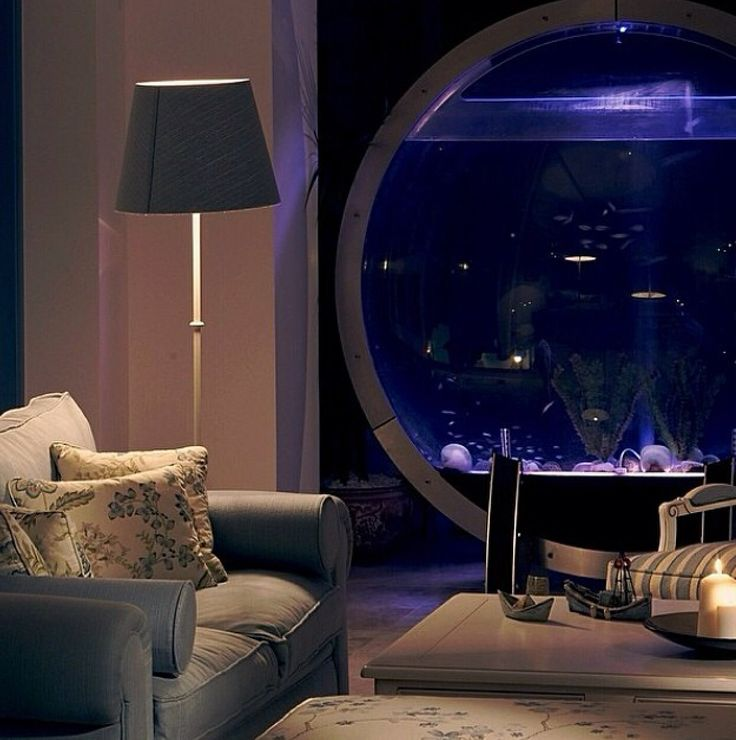 Best Fish Bowls Tanks Images On Pinterest Big Fish Fish