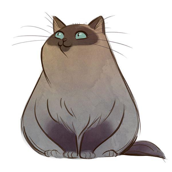 Birman Cat by Daily Cat Drawings