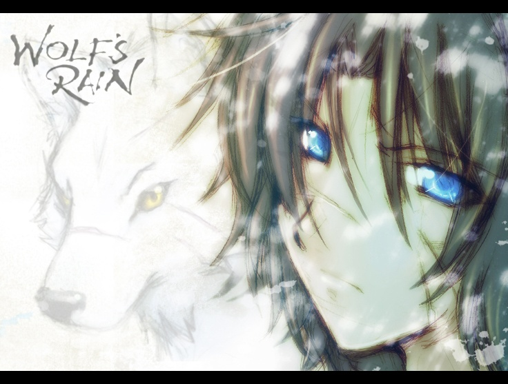 Kiba!!!!!! <3Animal Pics, Wolfs Rain Kiba Jpg 736 557, Rain Fans, Animal Boys, Wolfsrainkibajpg 736557, Rain Forever, Wolf Rain, Random Fandoms, Fans Art