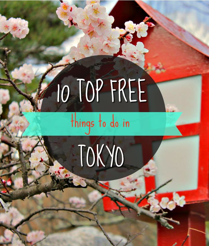 Tokyo has long kept its reputation for being a super expensive city. When I visited Japan's capital, I expected everything to be crazy pricey, but in reality things are rather affordable. There is plenty to do for the budget traveller and even more so for those looking to spend a lot. No matter what type of traveller you are, here are 10 FREE things you must do in Tokyo regardless!