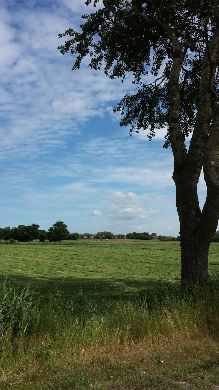 zomer in Formerum