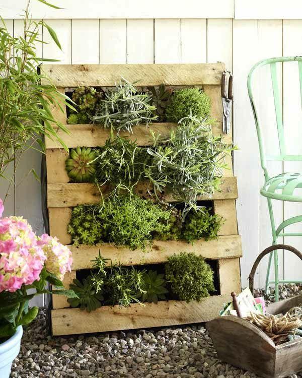 Pallette bois abrite un petit jardin