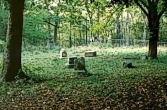 Bachelor's Grove Cemetery in Midlothian, near Chicago is one of the 25 most haunted places in the country.