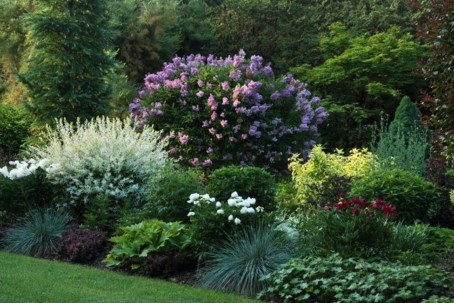 Perennial Garden Ideas curving flower bed Perennial Gardens Beautiful Garden And Bedding Ideas Via Cadys Falls Nursery Free Diy Landscape Project Plans Tips And Guides Pinterest