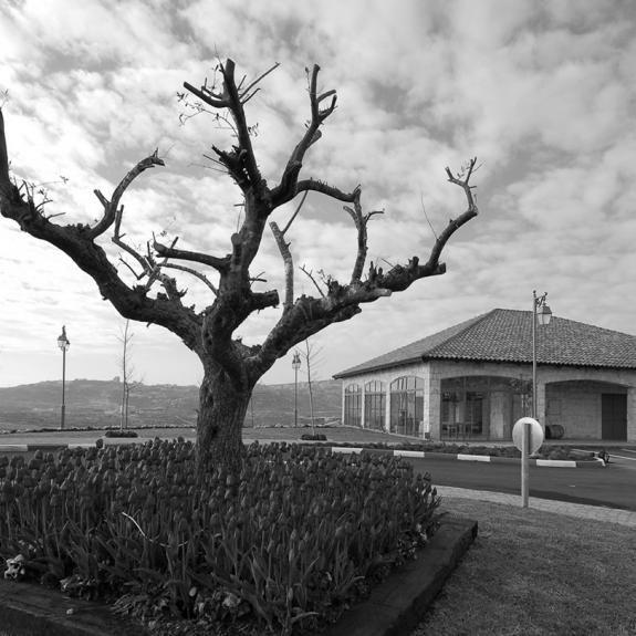 Main   Psagot Winery