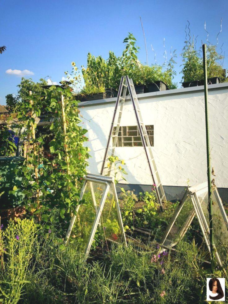 Gemuse Auf Dem Garagendach Anbau Anbau Auf Dem Garagendach Gemuse Garage Dach Dach Anbau
