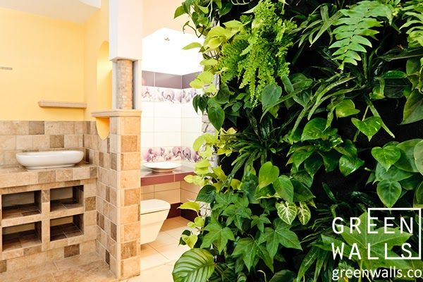 NOWY TARG - salon łazienek Komplet   ZIELONE ŚCIANY