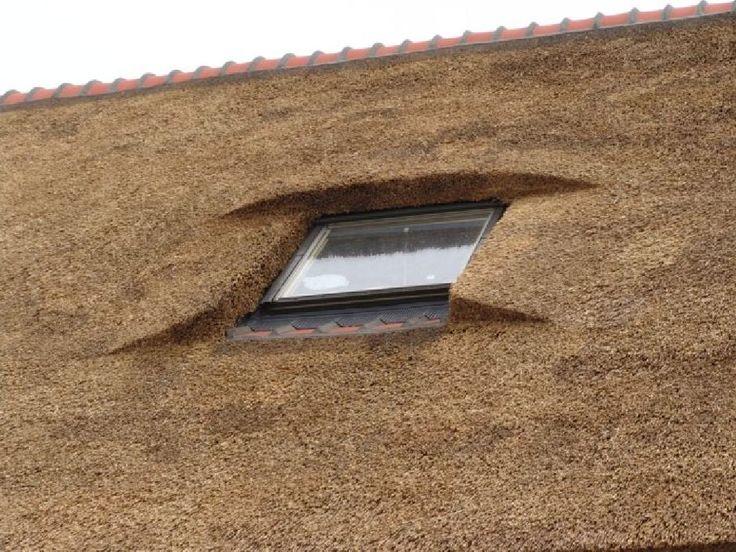 Dakramen | Rietdekkersbedrijf Mark de Laat | Voor nieuwbouw, renovatie en onderhoud aan uw rieten dak