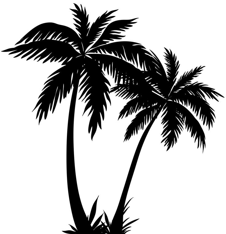 Palm Trees Silhouette PNG Clip Art Image