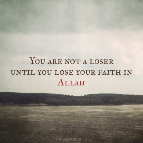 Are you a loser? www.lionofAllah.com