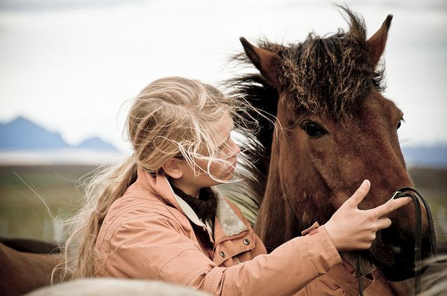 .Beautiful Horses, Iceland, Equestrian Things, Dreams, Jackets, People Talk, Underrated Traits, Animal, 14 People