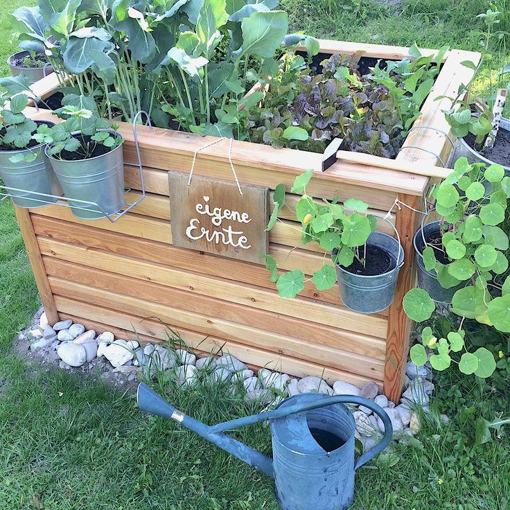 Die 25+ Besten Ideen Zu Hochbeet Bepflanzen Auf Pinterest ... Hochbeet Balkon Bauen Bepflanzen