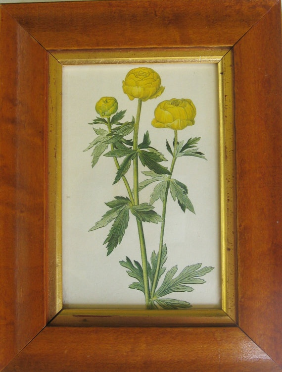 A Vintage print of Yellow Flowers by LaVera on Etsy, $25.00: Yellow Flowers