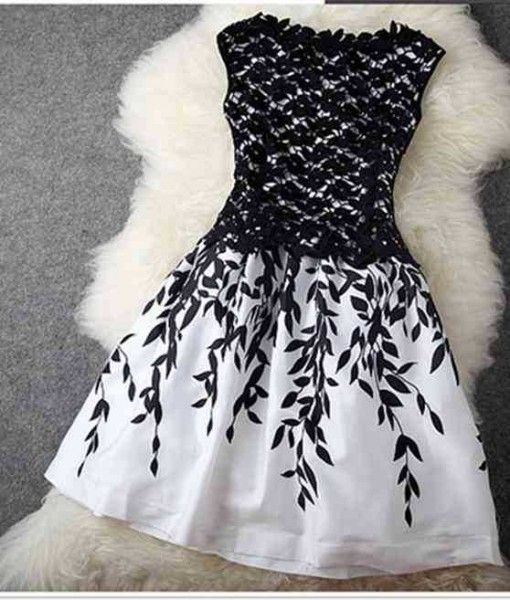 Monochrome Lace Embroidered A Line Dress