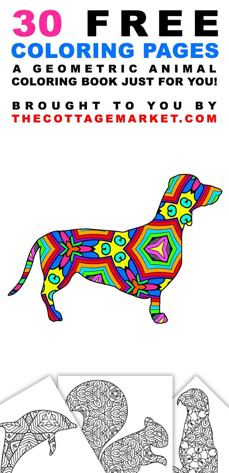 Free coloring pages august - 30 Free Coloring Pages A Geometric Animal Coloring Book Just For You