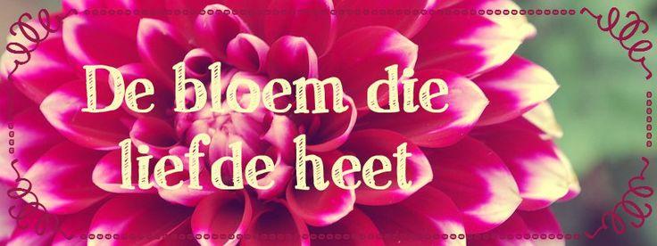 De bloem die liefde heet