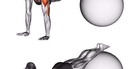 Фитбол: упражнения для здоровья позвоночника и не только!