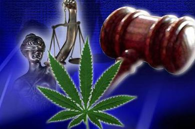 Federal Judges Dismiss Every Lawsuit Filed by California Medical Marijuana Dispensaries Seeking Protection | Weedist