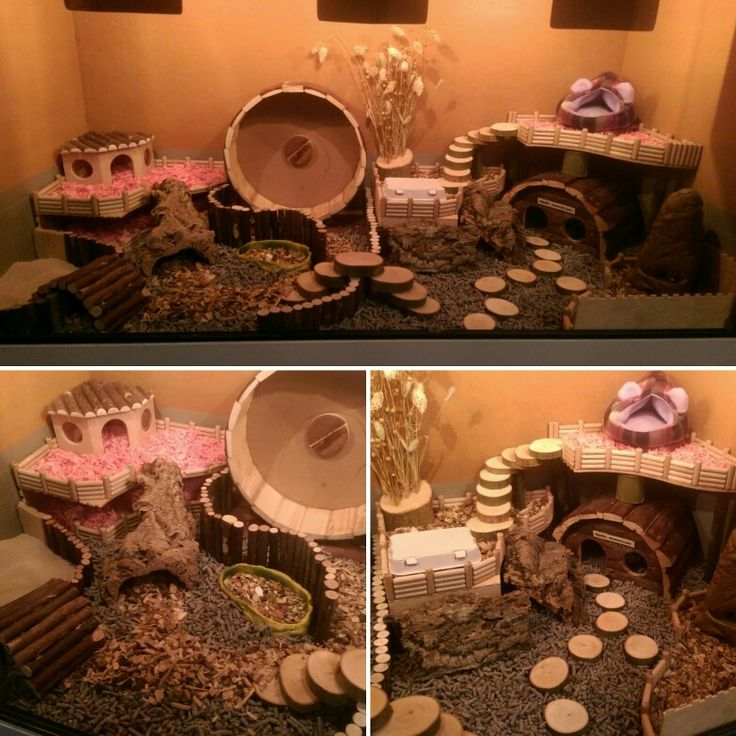 Yes, i did it again! I love it to decorate the cage of my little girl More