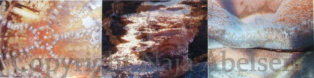 "Photograhy Triptych ""Meditative Mind"" a digital collage by Naja Abelsen"