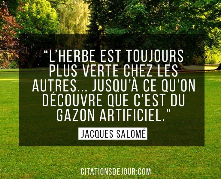 La #citation du jour                                                                                                                                                                                 Plus