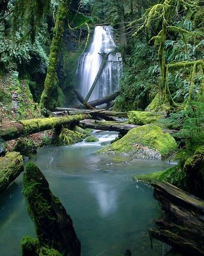 Oregon...Trestle Creek Falls.I want to go see this place one day.Please check out my website thanks. www.photopix.co.nz