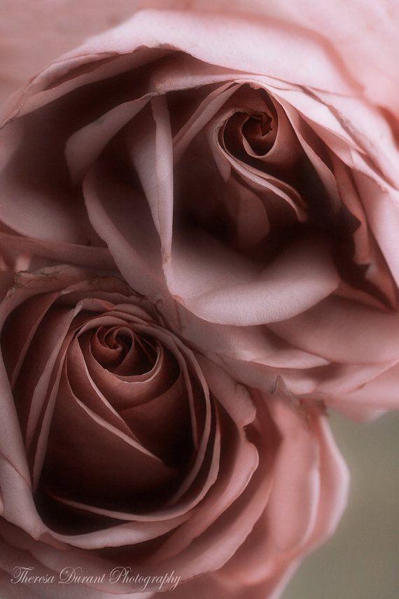 Fine art fotografie bloem fotografie print door TheresaDurantPhotos