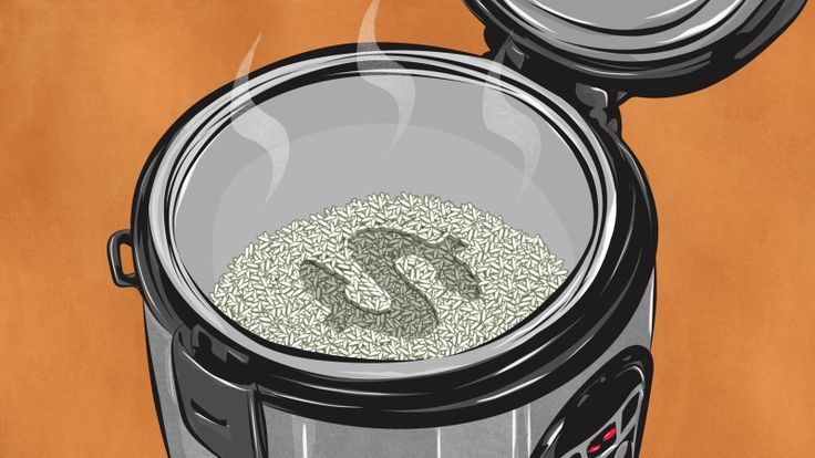I grew up with a standard, cheap rice cooker my mom bought at a grocery store. Shopping for my own cooker as an adult, I was surprised at how many options there are to choose from and how expensive those options can be. Cooking rice is a pretty straightforward task, so what's with the super expensive cookers? Here's what I found.