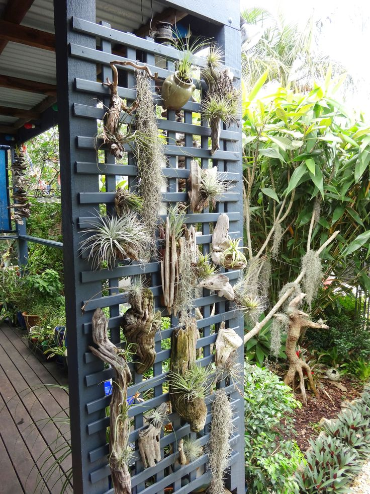 Miniature Greenhouse Gardens