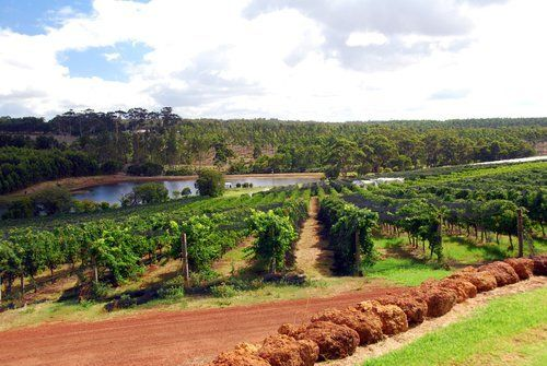 Bespoke Margaret River Wine Tours from Perth